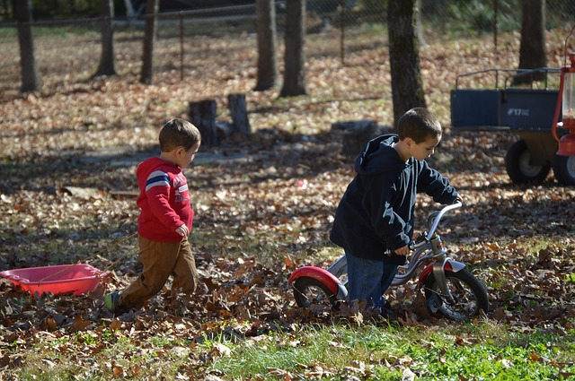 Two kids with a bike and trailer